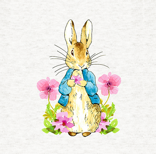 """Craft Quilting Panel Peter Rabbit /""""Mrs Mouse In A Shoe/"""" Fabric Cushion"""